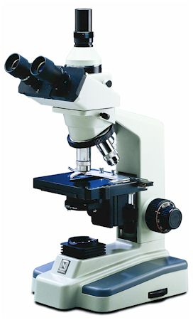 Differences between Light Microscope and Electron Microscope
