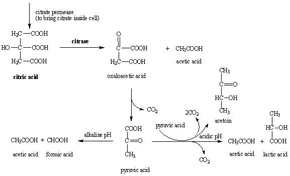 Principle of Citrate Utilization Test
