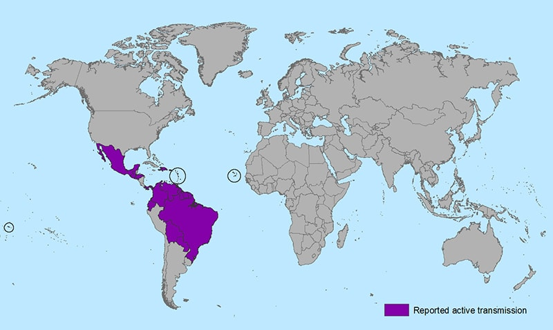 Epidemiology of Zika Virus