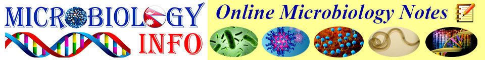 Online Microbiology Notes