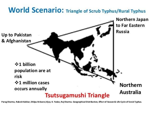 Epidemiology of Scrub Typhus